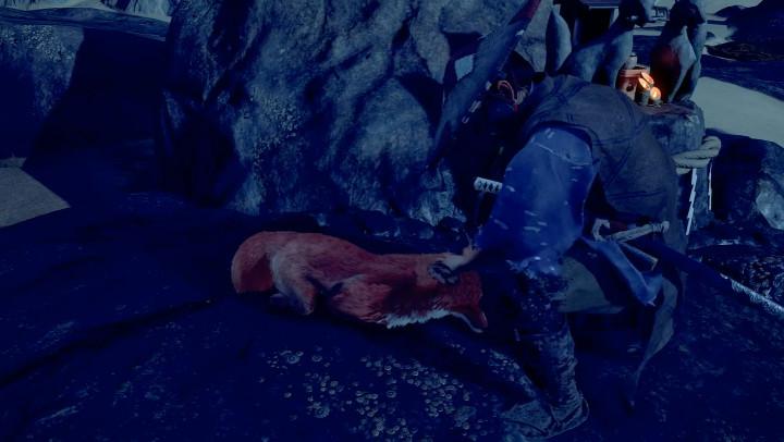 Ghost of Tsushima - Pet the Fox
