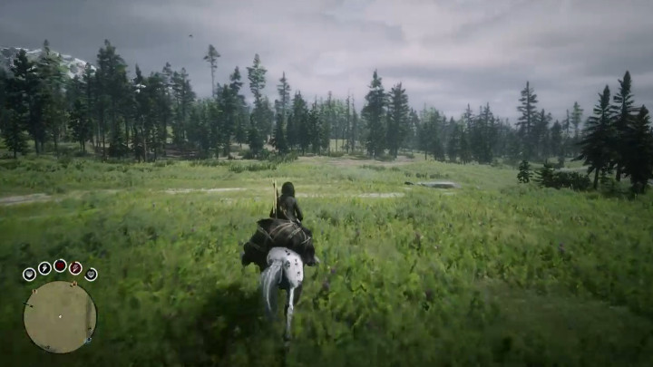 Red Dead Online - Riding a Horse