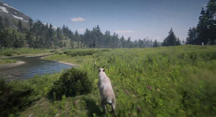 Red Dead Online - Playing as a Buck