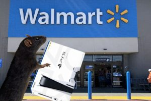 A Rat Buying a PS5 at Walmart