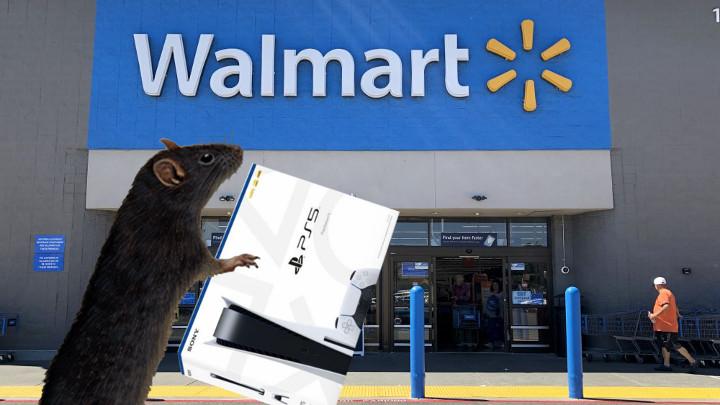 A Rat Buying a PS5 at Walmart