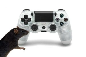DualShock 4 with a Rat