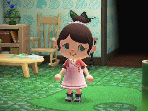 Animal Crossing Aerith