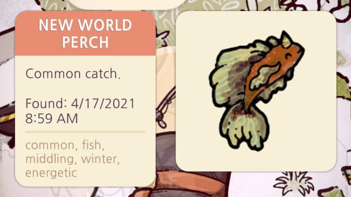 Cozy Grove - New World Perch