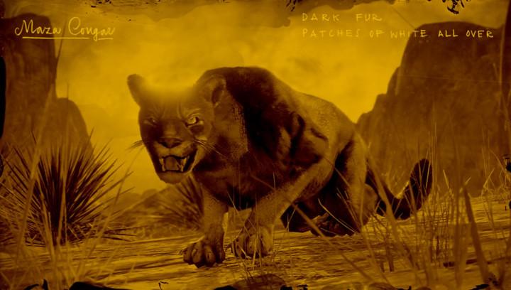 Red Dead Online - Legendary Maza Cougar