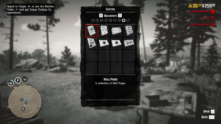 Red Dead Online - Documents