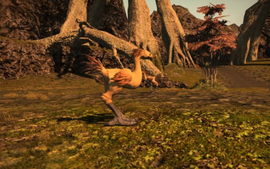 Final Fantasy XIV's Chocobo Forest Kind of Bums Me Out