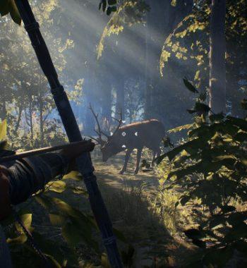 Robin Hood – Sherwood Builders Looks Like a Bullseye